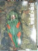 【書寶二手書T9/攝影_PNJ】昆蟲大師攝影典藏集-保育類昆蟲_李惠承