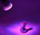 5W LED植物燈 杯燈 夾子燈