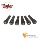 【缺貨】Taylor 民謠吉他弦釘 黑檀木+珍珠貝殼圓點 型號: 80110【Taylor原廠/Bridge Pins】taylor吉他弦釘
