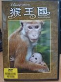 影音專賣店-B22-029-正版DVD*電影【猴王國/Monkey Kingdom】-迪士尼