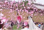 婚慶禮炮噴彩帶禮花筒慶典手持花筒花瓣雨禮賓花