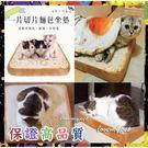 貓狗專用睡墊吐司 荷包蛋被被 寵物坐墊 沙發靠墊 抱枕 靠枕 貓咪造型土司墊 狗睡墊