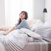 床包 / 雙人加大【日青】含兩件枕套 60支天絲 戀家小舖台灣製AAU301