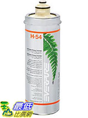 [玉山最低比價網] EVERPURE (美國愛惠普) 商業級 家用 除鉛+抑制水垢型 H-54 / H54 濾芯/濾心 AB2