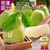 【鶴岡王家】 SGS認證鶴岡50年老欉柚子文旦禮盒5台斤x2箱 5台斤x2箱【免運直出】