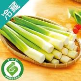 產銷履歷剝皮筊白筍 300G/袋【愛買冷藏】