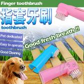 【zoo寵物商城】高級手指清潔刷(手指牙刷)加碼送手指洗澡刷顏色隨機