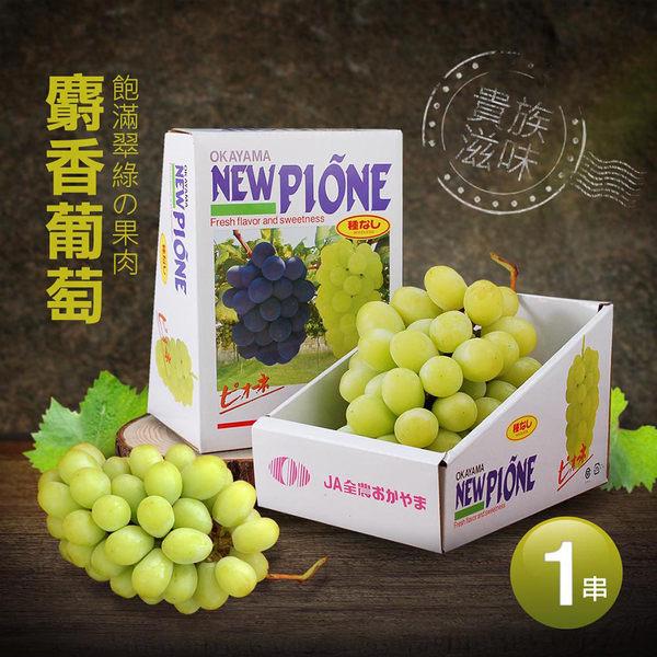 【屏聚美食】空運日本頂級麝香葡萄1串禮盒(約550G/串)_第二件起折後1298元