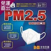 匠心 PM2.5專用 3D立體防護口罩 12入/盒4盒【免運直出】