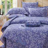 ✰雙人 薄床包兩用被四件組✰ 100%純天絲《艾貝塔》