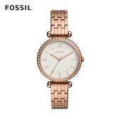FOSSIL Tillie 玫瑰金鑲鑽細緻鍊錶 36mm 女 BQ3497