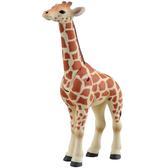 TOMICA多美動物園 ANIA AS12-長頸鹿寶寶_AN87105
