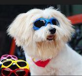 寵物眼鏡狗狗墨鏡 狗眼鏡 泰迪太陽鏡犬用防護眼鏡 大狗小狗墨鏡 聖誕狂購免運大購物