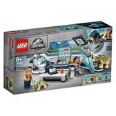 樂高積木Lego 75939 Dr. Wu's Lab: Baby Dinosaurs Breakout(加送樂高得寶英文字母卡)