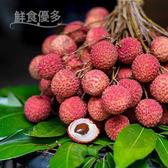 荔枝英雄・養樂多黑葉荔枝(10斤)