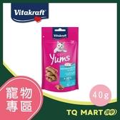 Vitakraft 香魚堡鮮魚口味 40g【TQ MART】