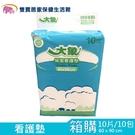 大象 看護墊 60x90CM 一箱10包 抗菌除臭 保潔墊 保潔看護墊 尿墊 產褥墊 產墊