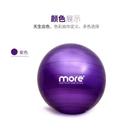 健身球瑜伽球平衡瑜珈大球球