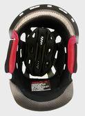ZEUS瑞獅安全帽,碳纖維安全帽,ZS-1200E,專用頭襯