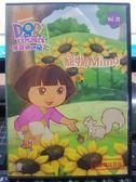影音專賣店-B15-020-正版DVD-動畫【DORA:愛探險的朵拉 13 雙碟】-套裝 國英語發音 幼兒教育