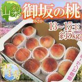 【WANG-全省免運】日本山梨縣夏娘水蜜桃(5kg±10%/約13~15入)