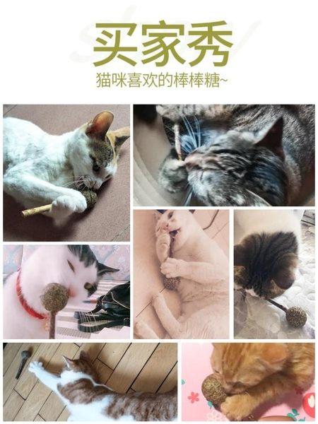 貓薄荷棒棒糖逗貓棒木天蓼球貓玩具貓磨牙棒小貓貓咪用品貓薄荷糖