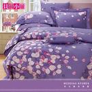 【貝淇小舖】100%萊賽爾天絲 雙人5x6.2尺 鋪棉兩用被床包組 附正天絲吊卡 凡妮莎