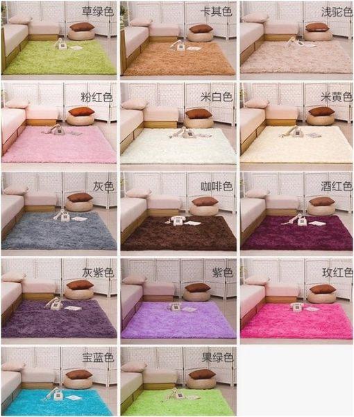 絲毛地毯 客廳 卧室 床邊地毯地墊 瑜珈地墊 遊戲軟墊80x160cm☆現貨供應☆【宇庭飾品店】