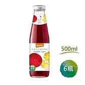 【南紡購物中心】【河谷鳥】德國Demeter甜菜根薑檸檬汁(500mlx6瓶)