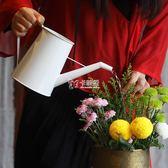 灑水壺 創意澆水壺家用園藝輕便澆花長嘴壺鐵藝復古手工漆igo 卡菲婭