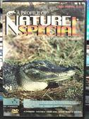 影音專賣店-P08-323-正版DVD-紀錄【探索動物大百科 美洲短吻鱷】-Discovy