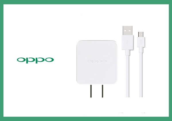OPPO 全系列 原廠5V/2A通用旅行充電器+2A USB傳輸充電線組 (不支援閃充-台灣電檢)