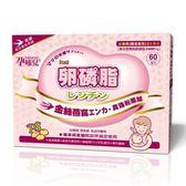 孕哺兒 卵磷脂燕窩多機能細末 4公克 X60包 X5盒