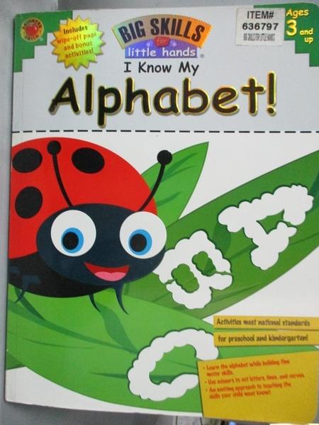 【書寶二手書T7/少年童書_XEF】I Know My Alphabet!_Brighter Child (COR)