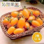 沁甜果園SSN.橙蜜香小番茄(5斤/盒,共2盒)﹍愛食網