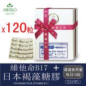 日本褐藻糖膠+B17膠囊共120粒(2盒)(素食可)【美陸生技AWBIO】