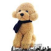 泰迪狗毛絨玩具小狗狗仿真玩偶「潮咖地帶」