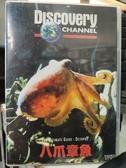 挖寶二手片-Z63-009-正版VCD-其他【終極指南系列:八爪章魚】-Discovery自然類(直購價)