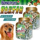 【zoo寵物商城】英國Bone Plus《超效螺旋|雙色潔牙骨》家庭號加碼送潔牙骨