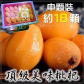 【果之蔬-全省免運】台灣頂級中顆枇杷原裝禮盒X6盒(18顆/盒 每盒約500g±10%含盒重)