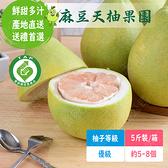 麻豆天柚果園 文旦優級(5斤裝/箱;約5~8個)含運組【766雜貨小舖】