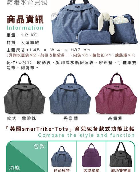 時尚模特5 in 1防潑水育兒包-高貴紫
