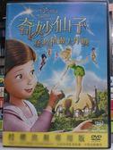 挖寶二手片-B13-076-正版DVD【奇妙仙子拯救精靈大作戰/迪士尼】-卡通動畫-國英語發音