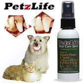 【 培菓平價寵物網 】PetzLife《潔牙樂》天然潔牙噴劑 12oz‧天然植物形成分