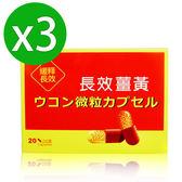 【八福台康】長效薑黃膠囊x3(20粒/盒)