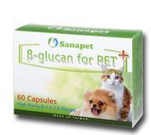 *KING WANG*桑納沛 Sanapet《體多醣Plus(β-glucan for PET+)》300mg*60顆