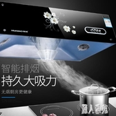 220V大吸力抽油煙機中式頂吸家用油姻機小型廚房老式租房吸油煙機 DJ10992『麗人雅苑』