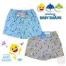 碰碰狐BABY SHARK 8329平口褲 鯊魚寶寶內褲(2件) ~DK襪子毛巾大王