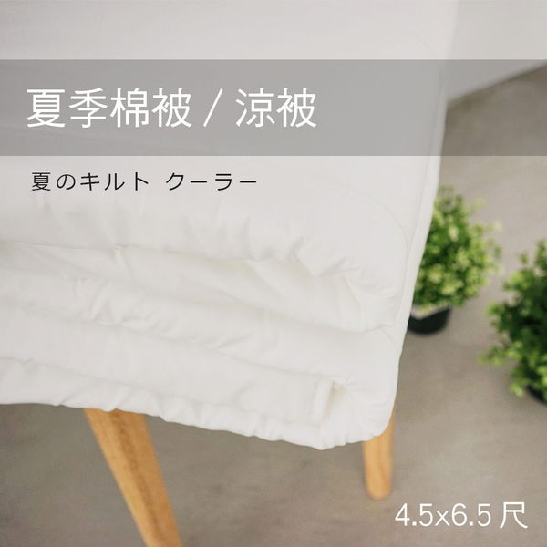 單人 / 夏季棉被 [夏季薄被胎] 用於薄被套內可當涼被使用 ; 可水洗 ; 翔仔居家台灣製
