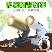 烏龜曬背燈 小烏龜曬背燈補鈣三合一加熱取暖全光譜太陽燈泡爬寵龜用背照燈架 宜品居家